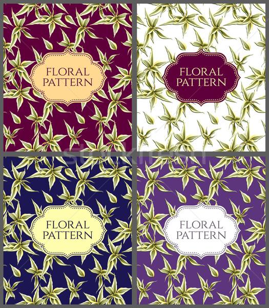Floral cartões conjunto sem costura grande folhas Foto stock © MarySan