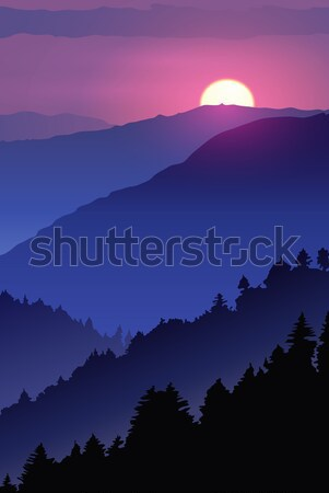 Hand-drawn night poster wildlife. Winter sunset in the wood. Stock photo © MarySan