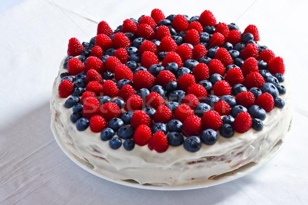 Kremsi tatlı kek yaban mersini ahududu çikolata Stok fotoğraf © MarySan