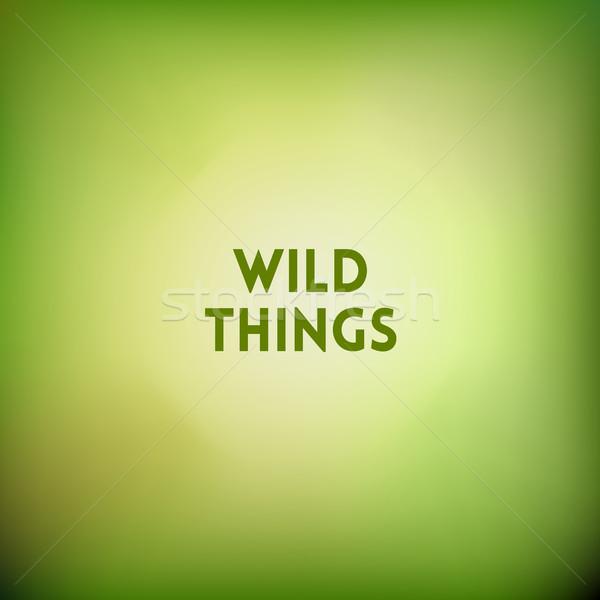 Vierkante wazig groene kiwi kleuren citaat Stockfoto © MarySan