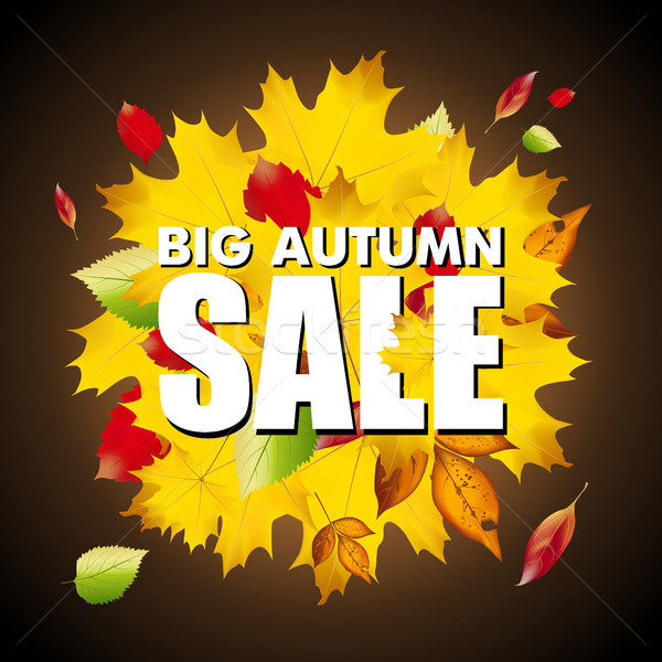 Seasonal big autumn sale business background with colored leafs in darkness Stock photo © MarySan