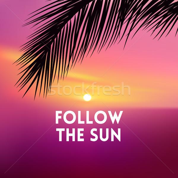 Vierkante wazig roze zonsondergang zee palmboom Stockfoto © MarySan