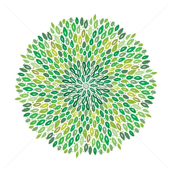 Vetor floral verde mandala indiano folha Foto stock © MarySan