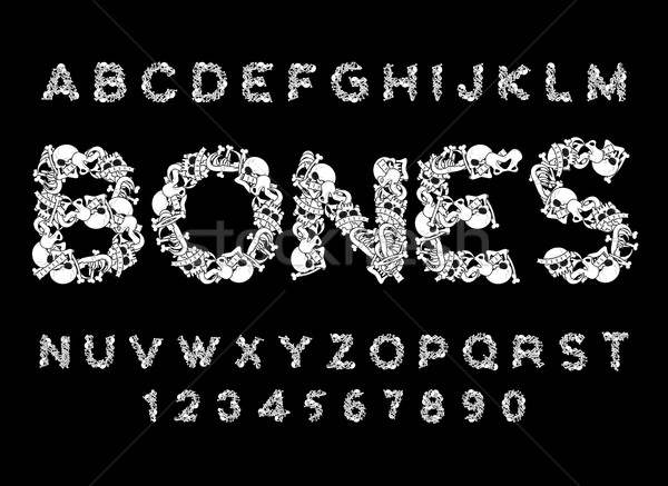 Bones font. Letters anatomy. Skeleton ABC. Skull and spine. Jaw  Stock photo © MaryValery