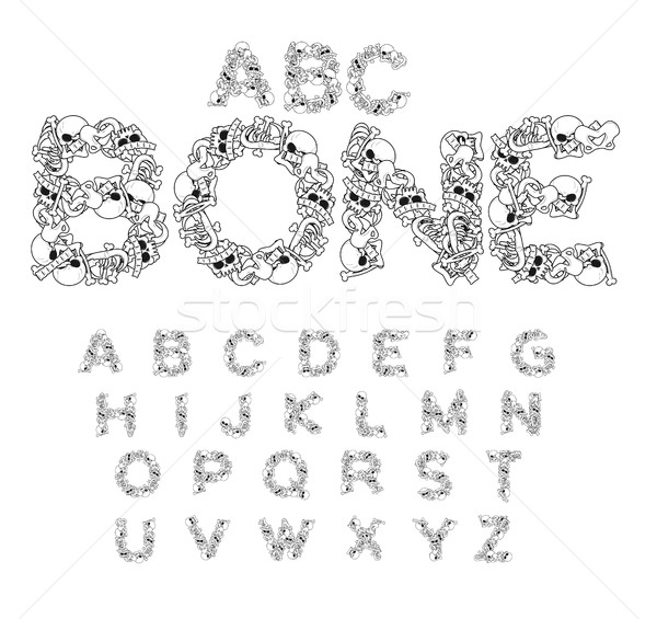 Bone ABC. Skeleton font. Letters anatomy. Skull and spine. Jaw a Stock photo © MaryValery