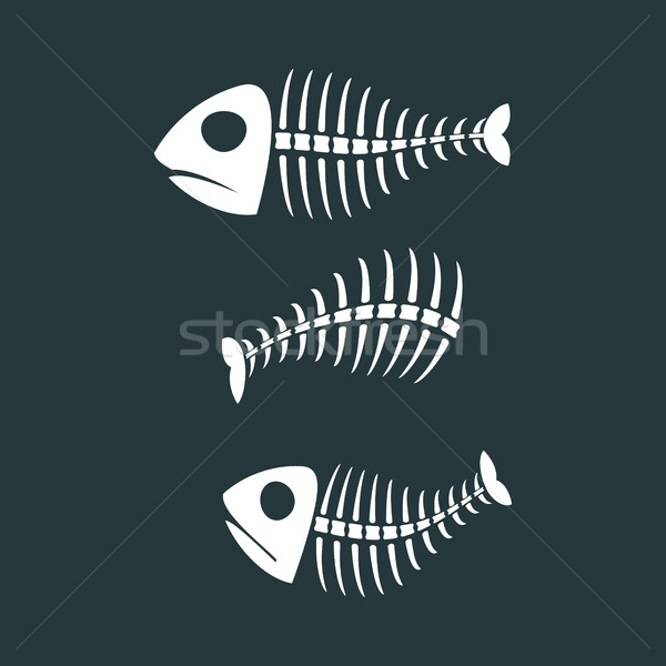 Fish bones isolated. fishy Skeleton on white background Stock photo © MaryValery