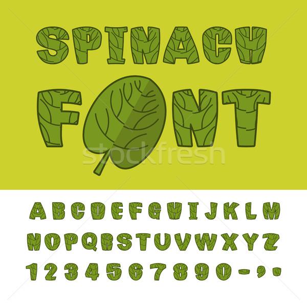 Spenót betűtípus hasznos gyógynövények ábécé zöld Stock fotó © MaryValery