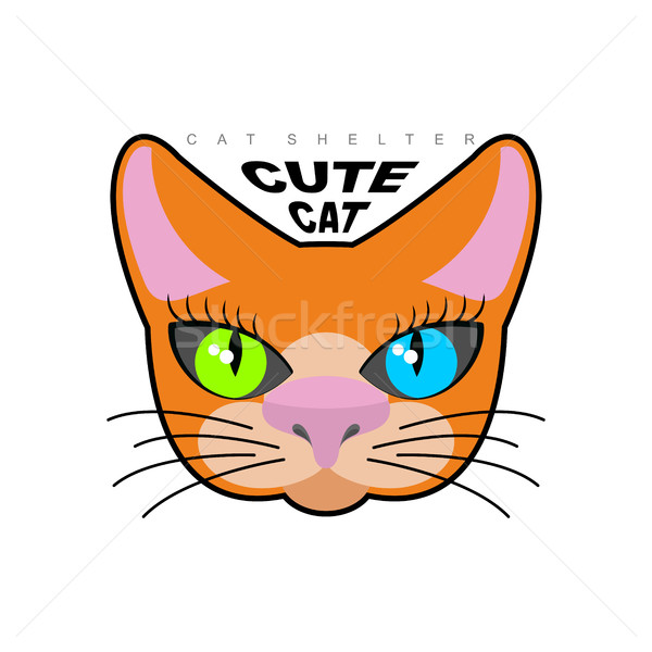 Sevimli kedi logo barınak vektör amblem Stok fotoğraf © MaryValery