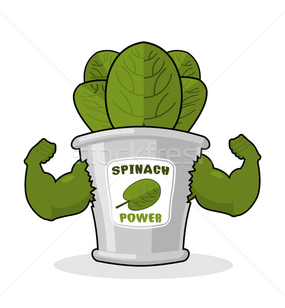 Spinach strong and powerful. Muscular arms of banks spinach. Hea Stock photo © MaryValery