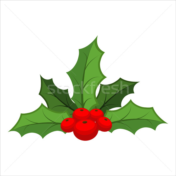 Mistletoe isolated. Traditional Christmas plant. Holiday red ber Stock photo © MaryValery