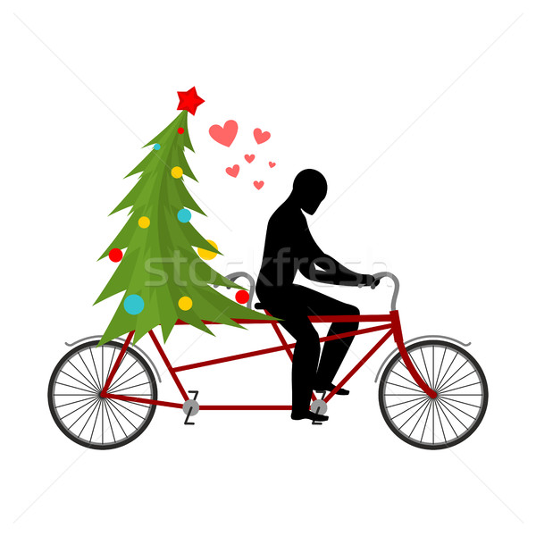 Christmas Lover. Lovers of bicycling. Man rolls christmas tree o Stock photo © MaryValery