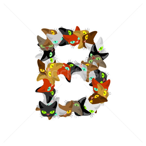 letter B Cat font. Pet alphabet symbol. home animal ABC sign Stock photo © MaryValery