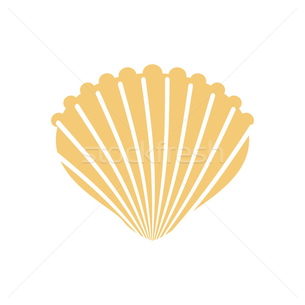 Shell isolated. conch in white background. Production of natural Stock photo © MaryValery