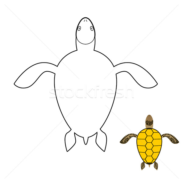 Turtle coloring book. Marine reptiles. Vector illustration Stock photo © MaryValery