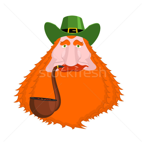 St. Patrick's Day Leprechaun with red beard and pipe. Green hat. Stock photo © MaryValery