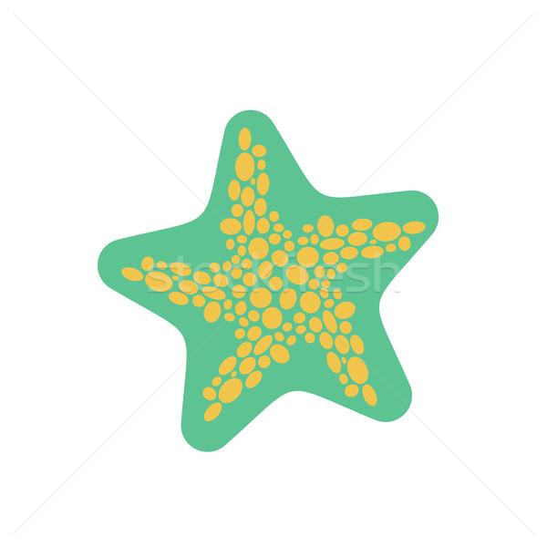 Starfish isolado animais marinhos branco aquático beleza Foto stock © MaryValery