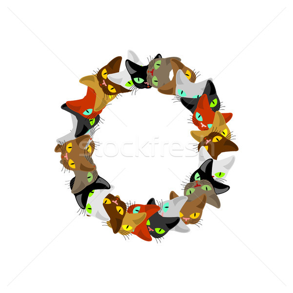 letter O Cat font. Pet alphabet symbol. home animal ABC sign Stock photo © MaryValery