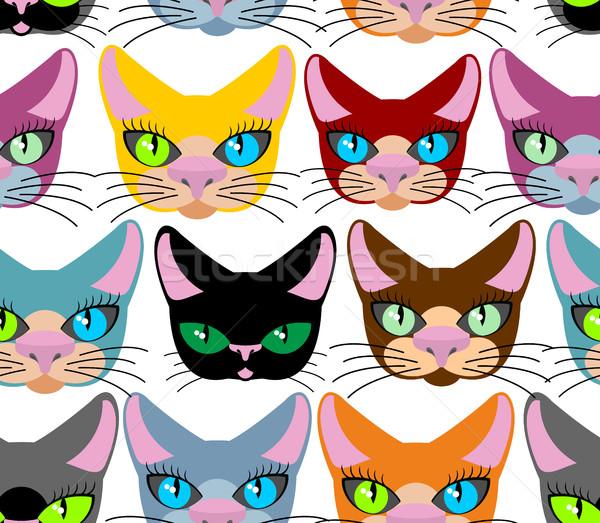 Foto stock: Gatos · muitos · diferente · animais · de · estimação · vetor