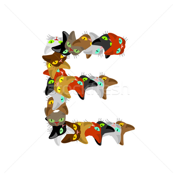 letter E Cat font. Pet alphabet symbol. home animal ABC sign Stock photo © MaryValery