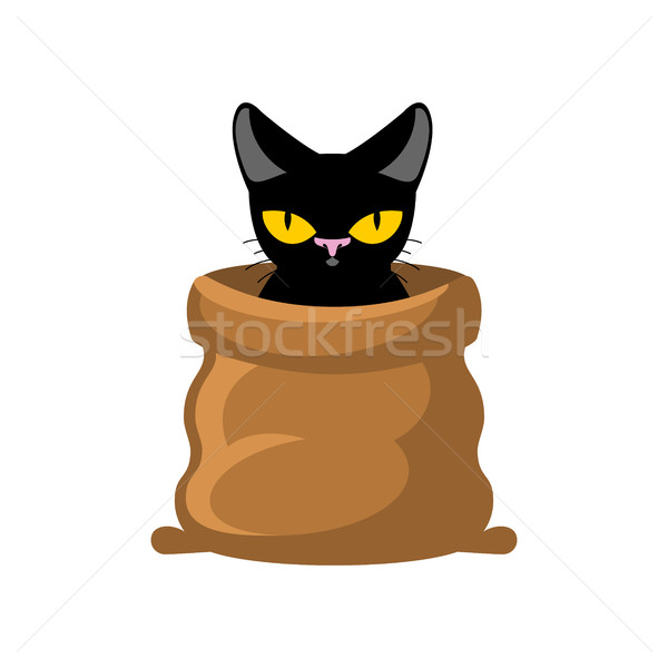 Cat in bag. Pet in sack. Allegory bad buy Stock photo © MaryValery