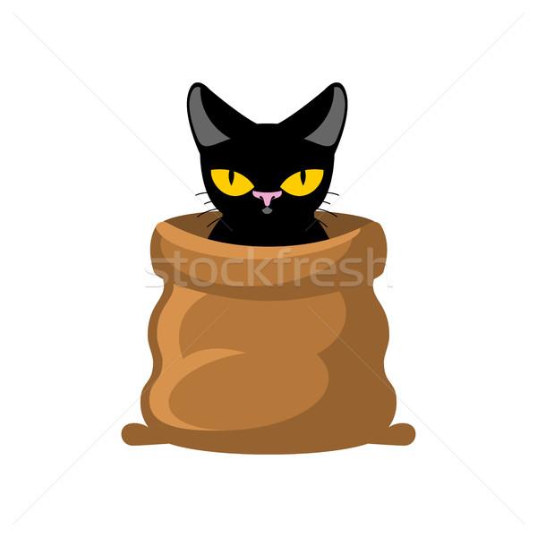 Kedi çanta evcil hayvan alegori kötü Stok fotoğraf © MaryValery