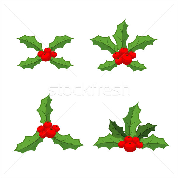 Sprig of mistletoe set. Traditional Christmas plant. Holiday red Stock photo © MaryValery