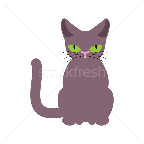 Cat smoky isolated. Pet on white background Stock photo © MaryValery