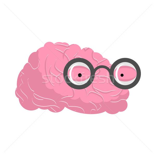Hersenen bril genie menselijke geest gezicht Stockfoto © MaryValery
