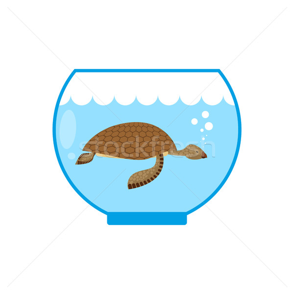 Sea turtle in an aquarium. Water animal Pet in captivity.  Stock photo © MaryValery