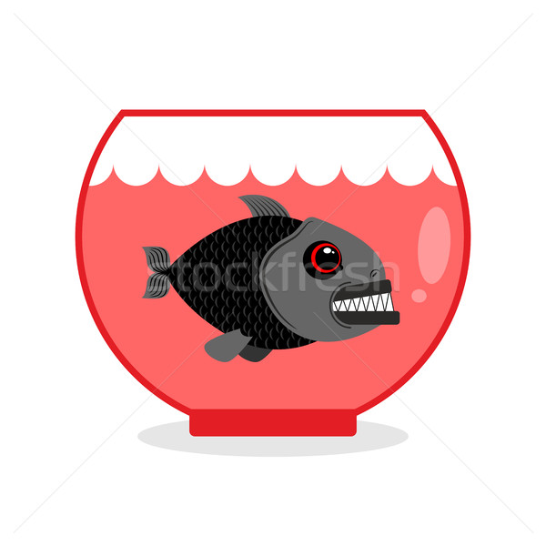 Piranha in Aquarium. Dangerous Home sea creature. Wild Predator  Stock photo © MaryValery