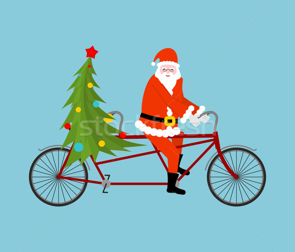 Santa Claus and Christmas tree ride bicycle. Christmas tandem. O Stock photo © MaryValery
