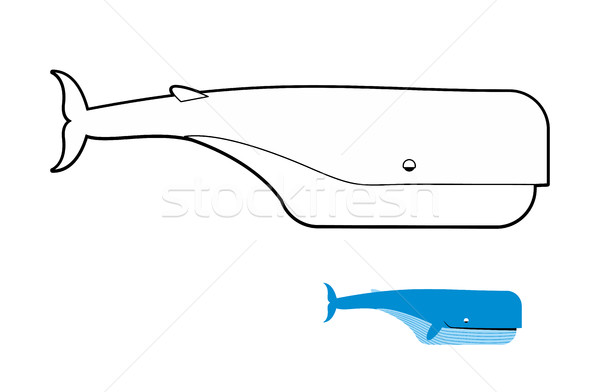 Whale Stock Photos Stock Images And Vectors Stockfresh