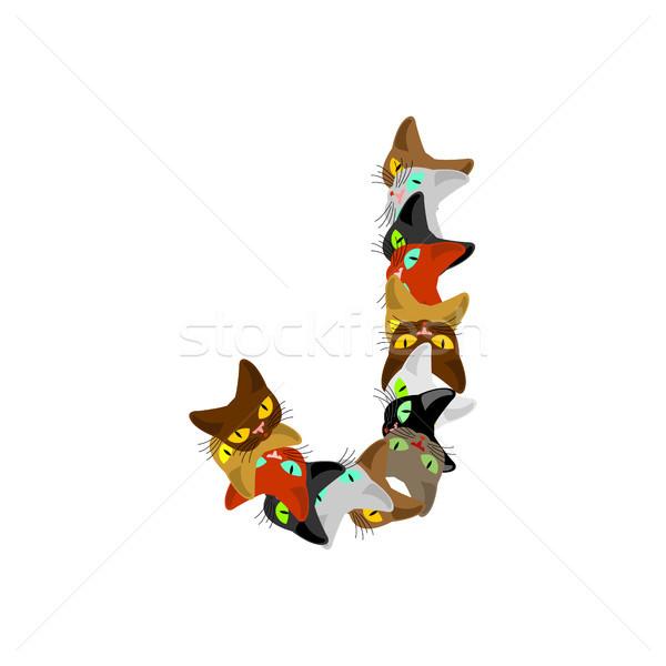letter J Cat font. Pet alphabet symbol. home animal ABC sign Stock photo © MaryValery