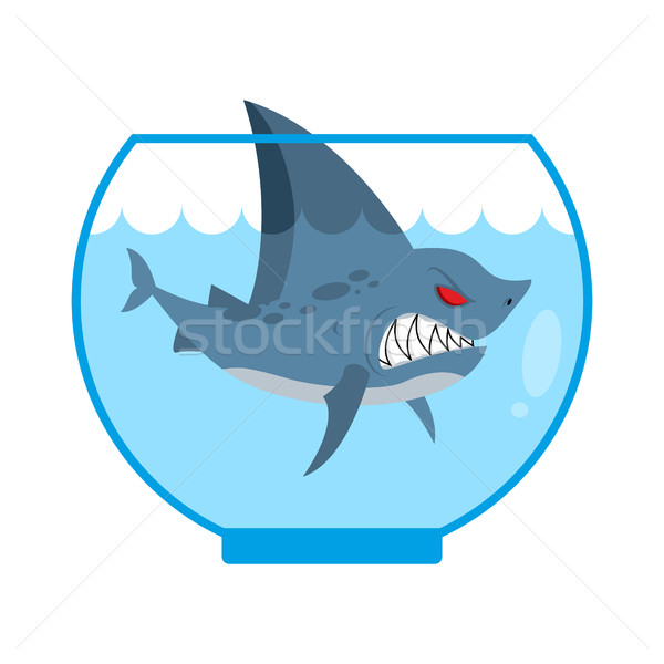Shark in Aquarium. Angry Marine predator with large teeth. Home  Stock photo © MaryValery