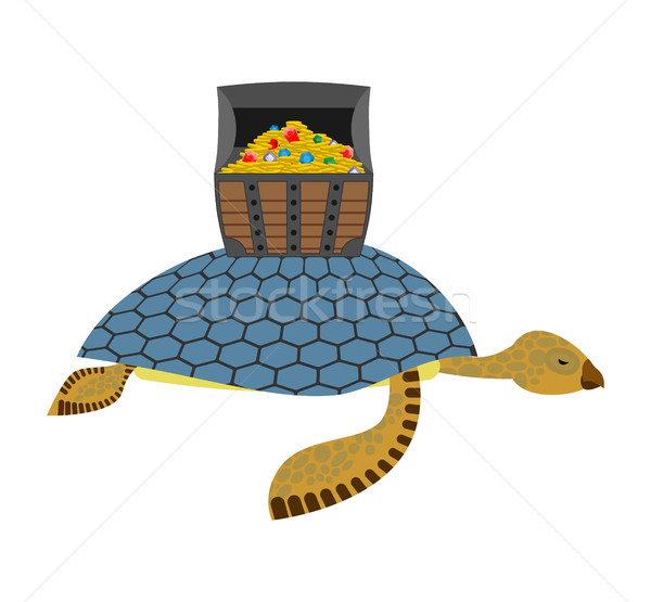 Water Turtle and treasure chest. Marine reptiles are lucky pirat Stock photo © MaryValery