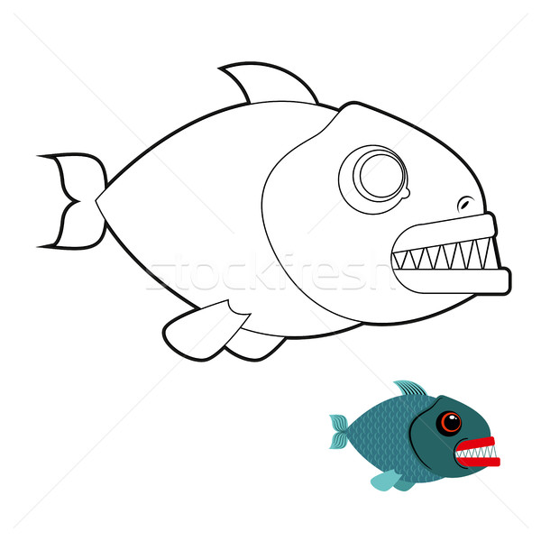 Piranha coloring book. Terrible sea fish with large teeth. Angr Stock photo © MaryValery