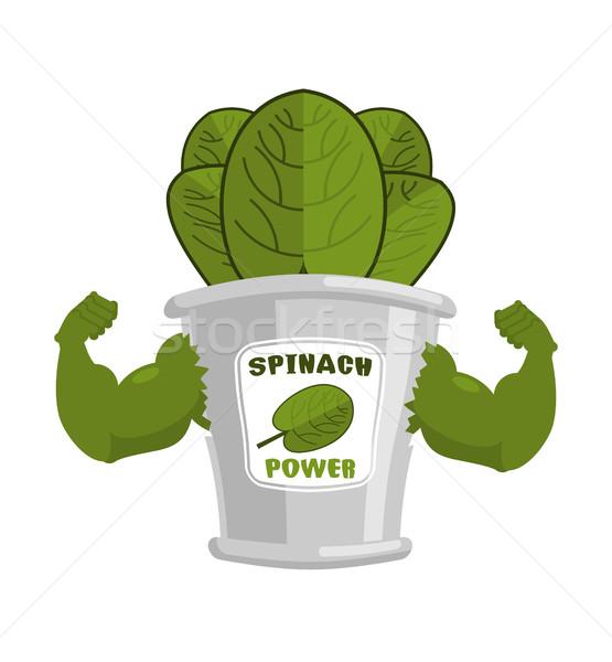 Forte espinafre estanho poderoso ervas músculo Foto stock © MaryValery