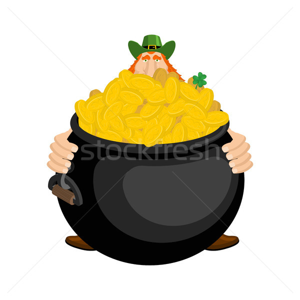 St.Patricks Day. Leprechaun and pot of gold. Magic dwarf and boi Stock photo © MaryValery