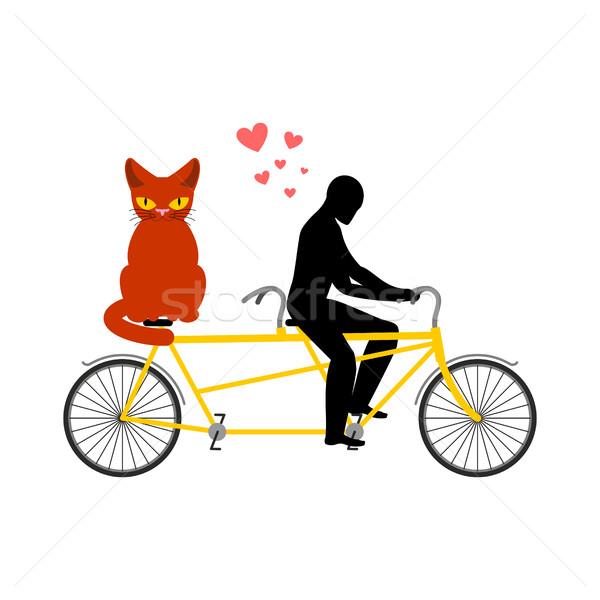 Macska szerető tandem enyém cica szerelmespár Stock fotó © MaryValery