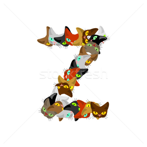 Stock photo: letter Z Cat font. Pet alphabet symbol. home animal ABC sign