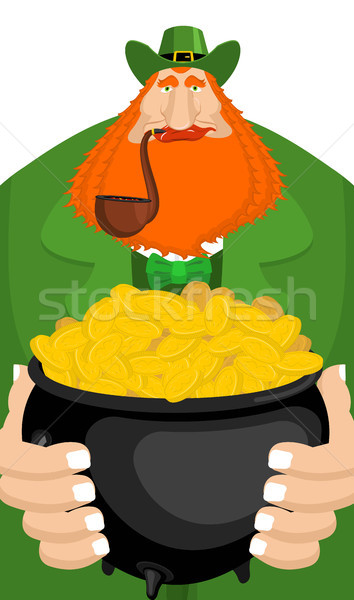 Stock photo: St. Patrick's Day. Leprechaun and pot of gold. Magic dwarf and b