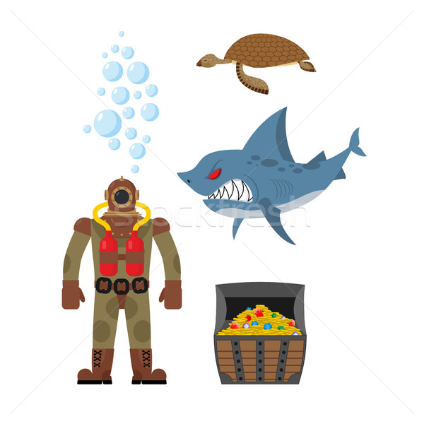 Marine set a diver and shark. Sea turtle and treasure chest. Vec Stock photo © MaryValery