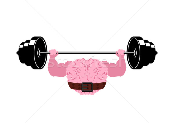 Strong brain and barbell. Powerful pumped human brains Stock photo © MaryValery