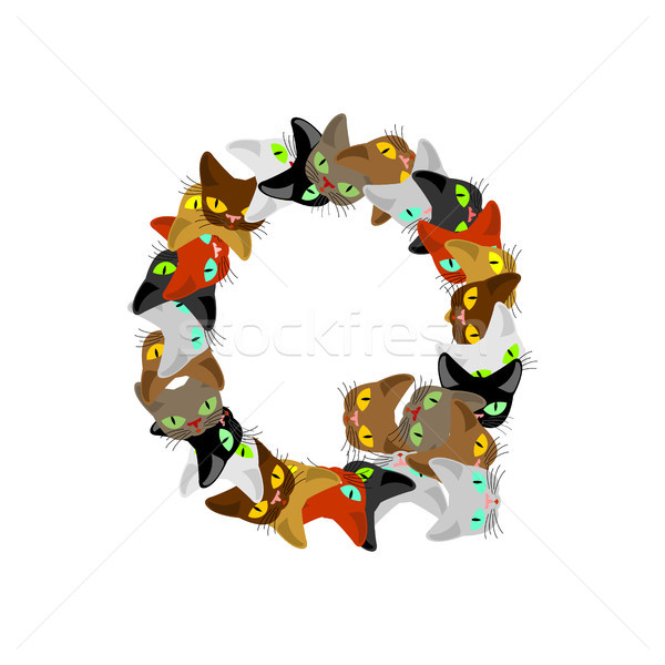 letter Q Cat font. Pet alphabet symbol. home animal ABC sign Stock photo © MaryValery