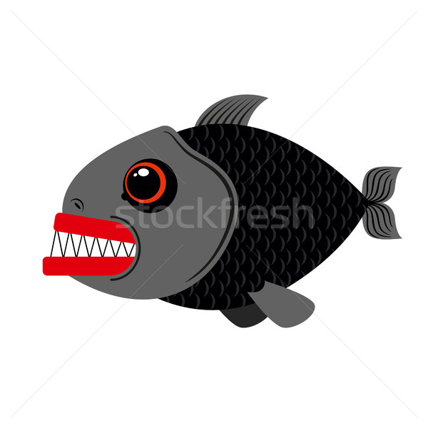 Piranha marine predator on white background.Terrible sea fish wi Stock photo © MaryValery