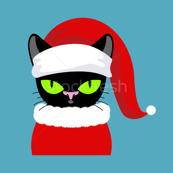 Santa black Cat. Pet in Christmas hat. New Year illustration. Xm Stock photo © MaryValery