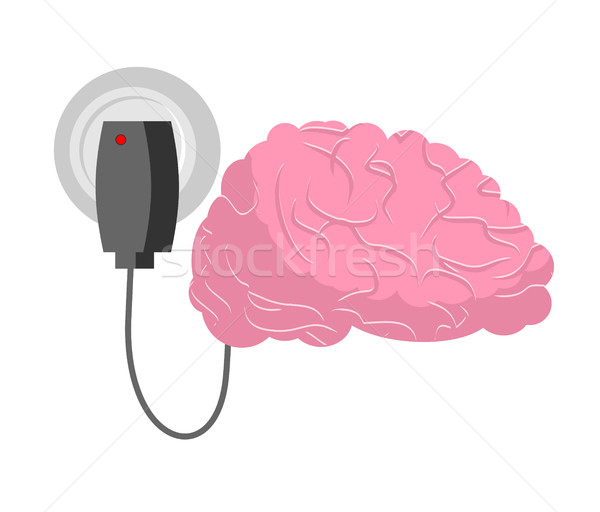 Charging for brain. Human brains and charger Stock photo © MaryValery