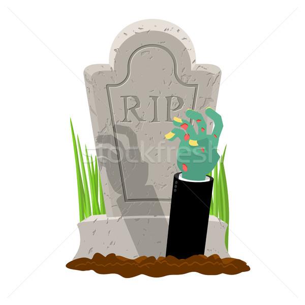 Halloween grobu strony zombie nagrobek ramię Zdjęcia stock © MaryValery