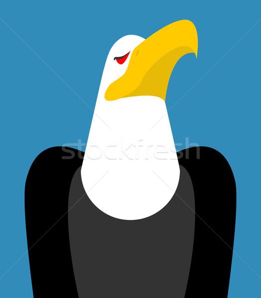 Kaal adelaar hoofd geïsoleerd vogel Stockfoto © MaryValery