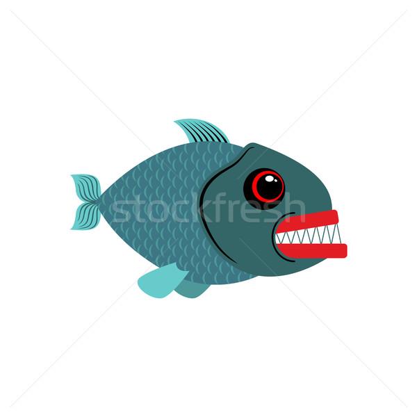 Piranha isolado ver peixe branco abstrato Foto stock © MaryValery